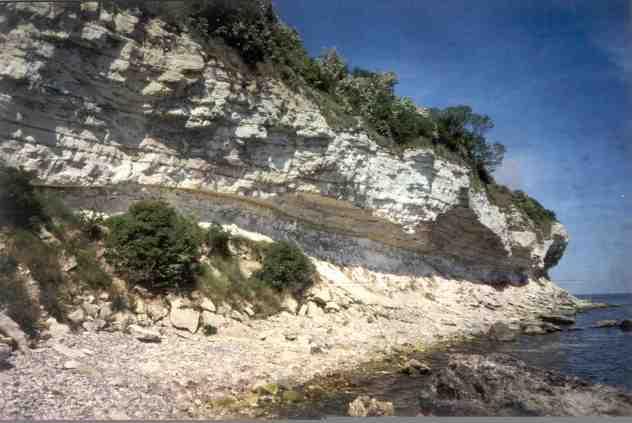 Stevns klint 2